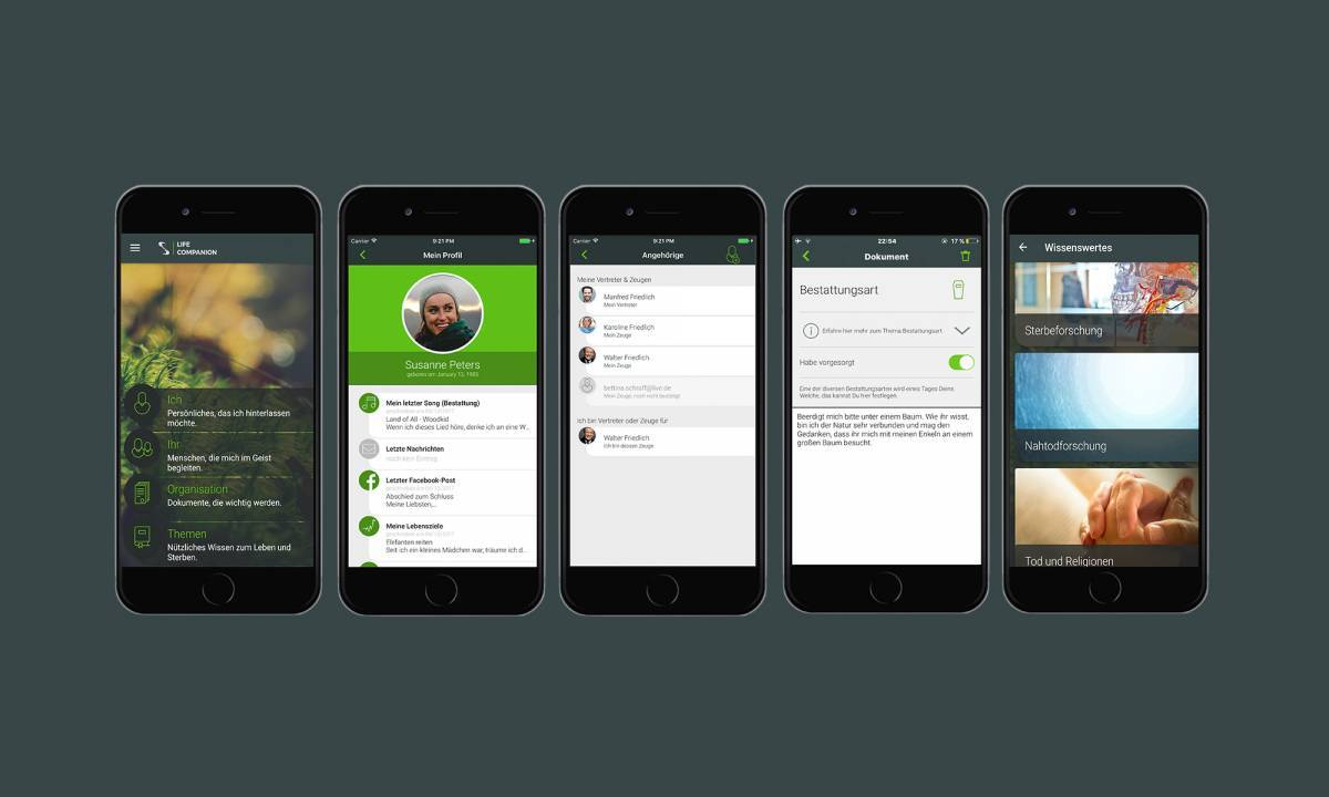 LifeCompanion - Screenshot